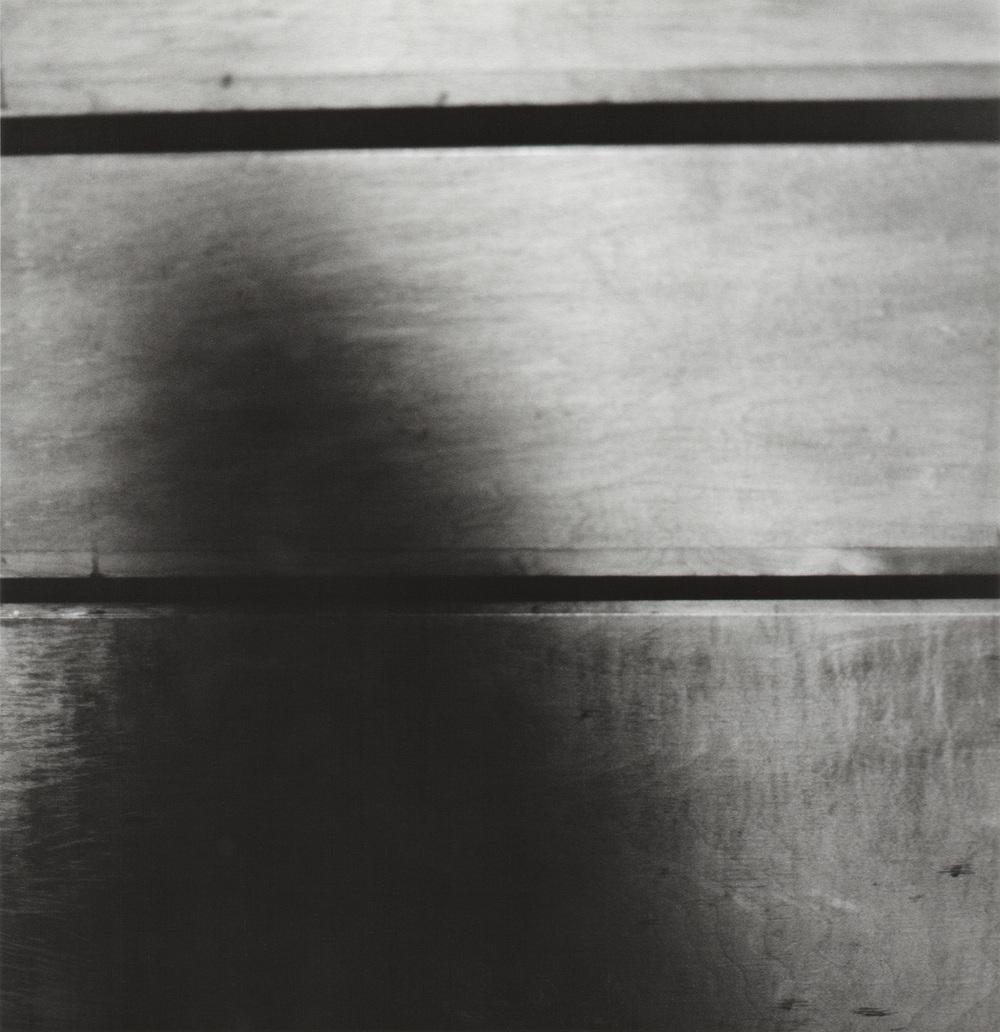 gelatin silver print (11/20)  2016