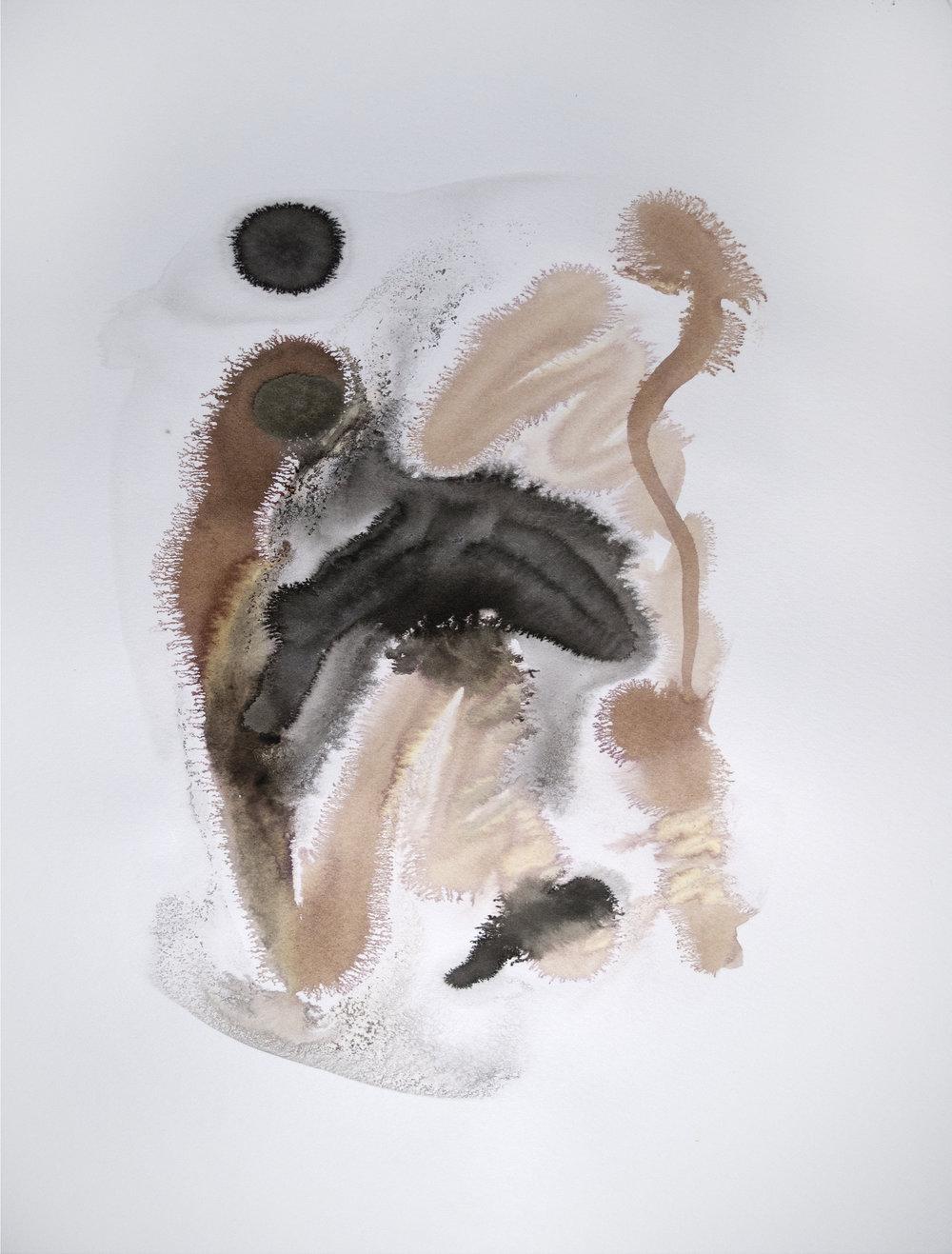 water brown black 6.jpg