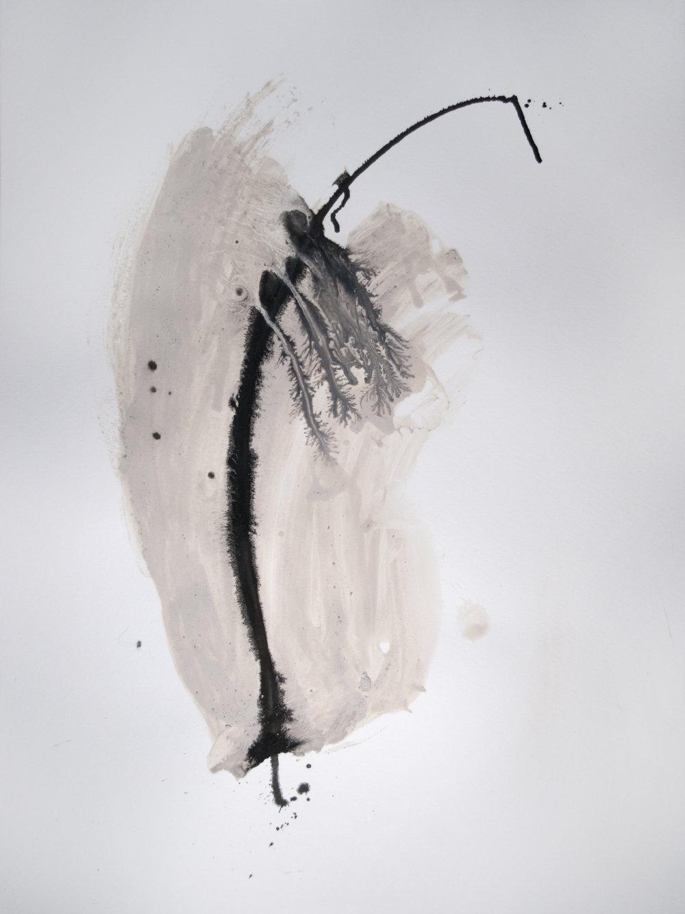 white clay 1.jpg