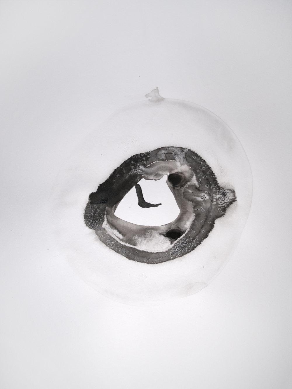 black ink doughnut 2.jpg