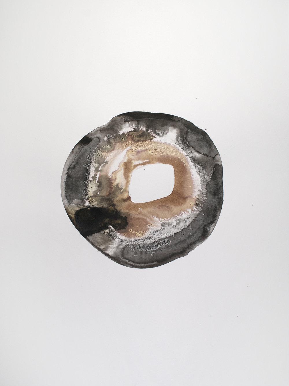 brown black doughnut 7.jpg