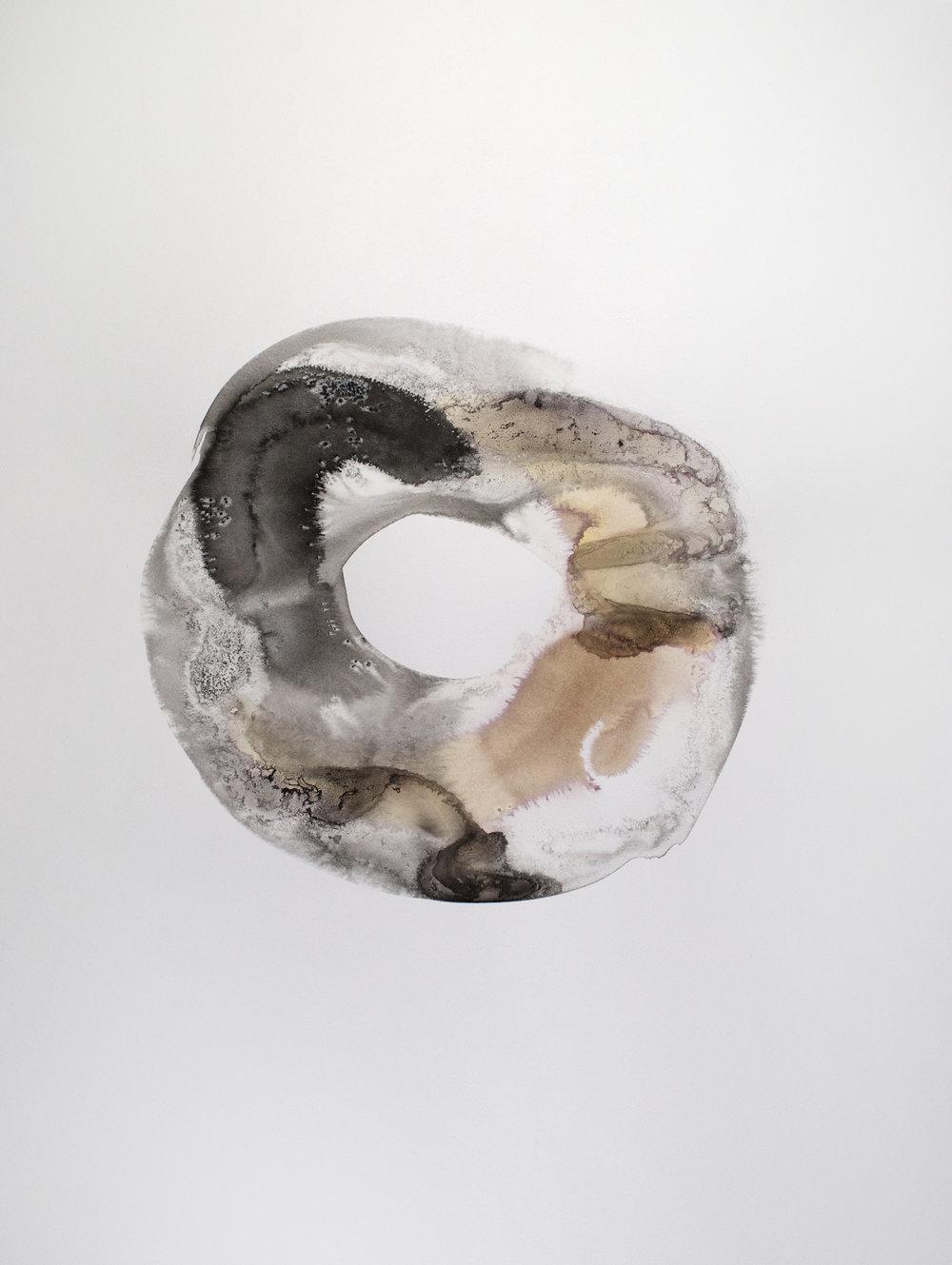 brown black doughnut 10.jpg