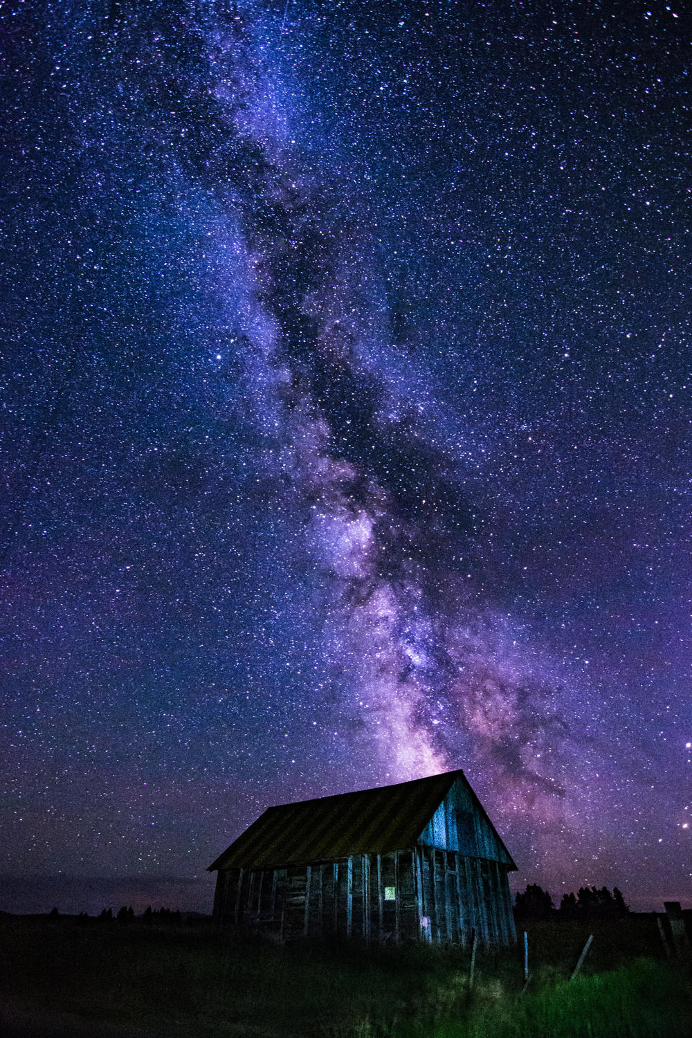 Midnight Shed