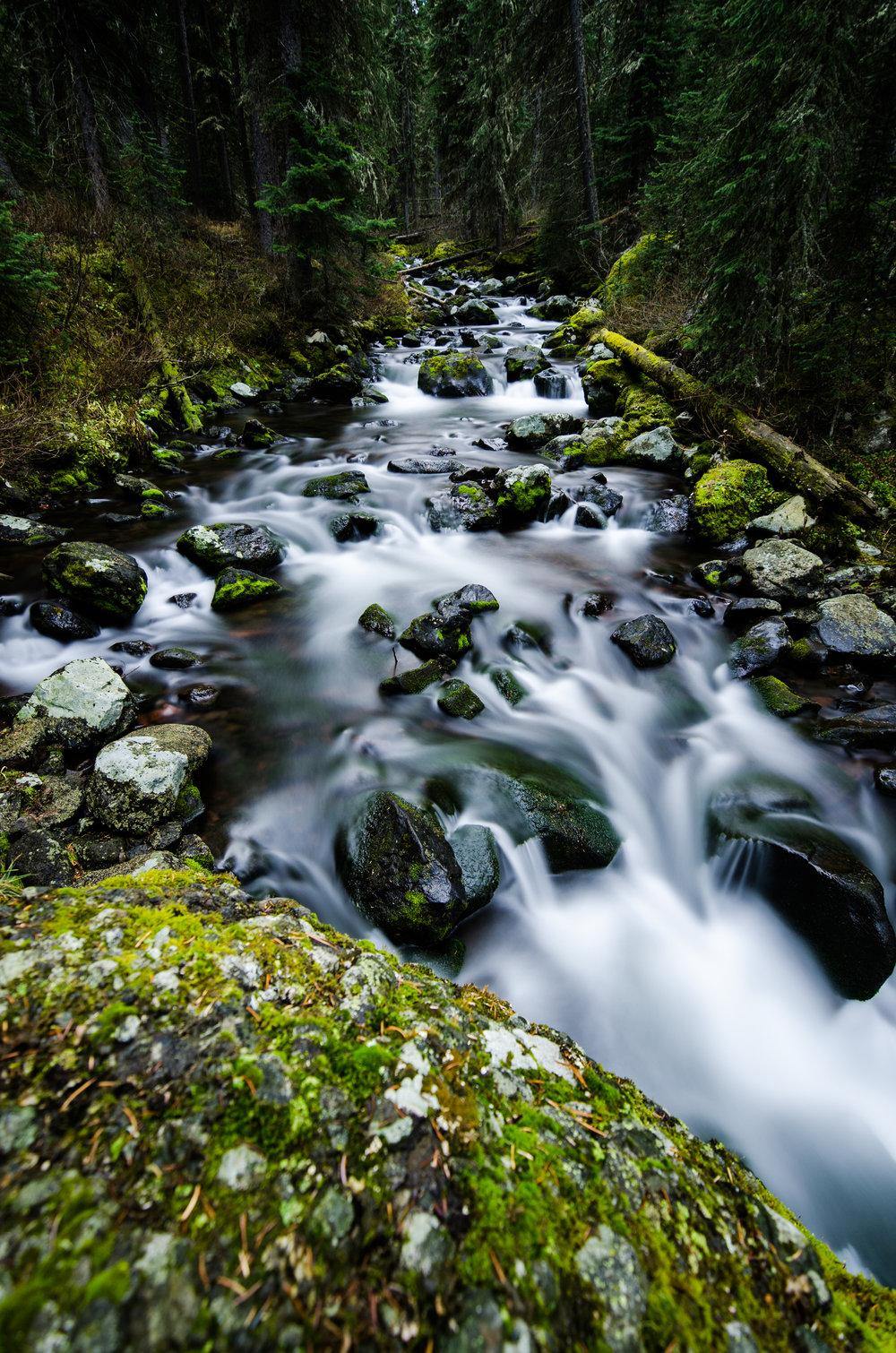 Creek runs through it