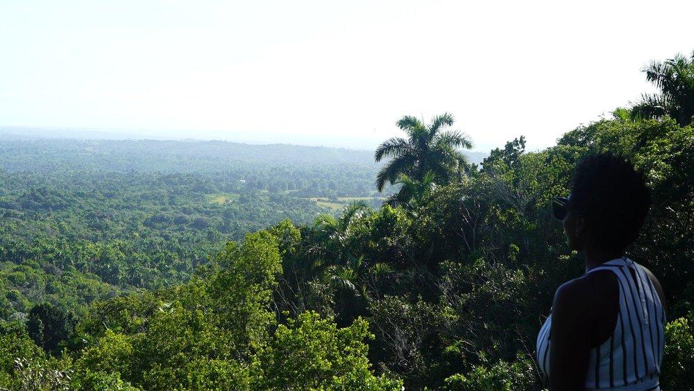 Bianca Jeanty Hits Cuba - Coffee Plantation.jpg