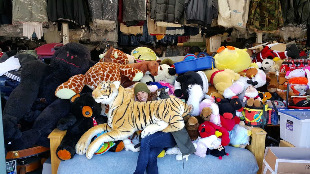 Hiding out in the stuffed animals.