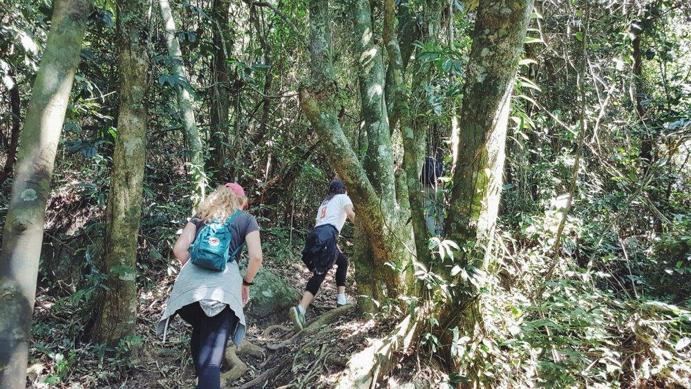 Global Citizen Year group hiking up the Trilha do Morro do Santinho in the north of the Ilha da Santa Catarina.