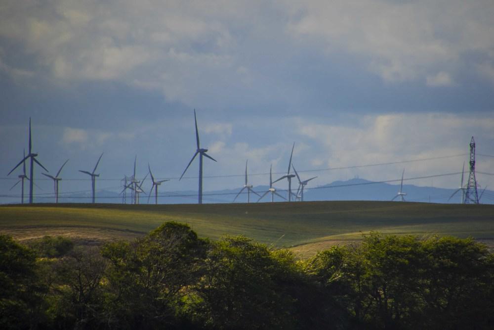 Windmills_A0A5690.jpg