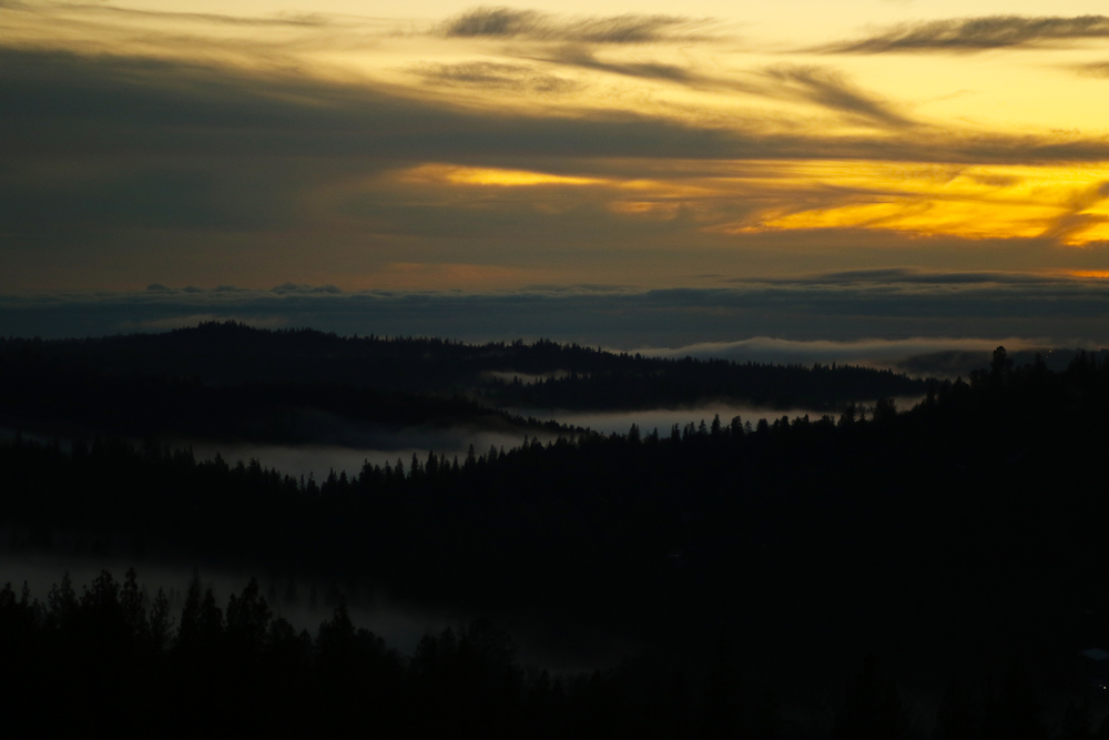 Fog Valley.jpg
