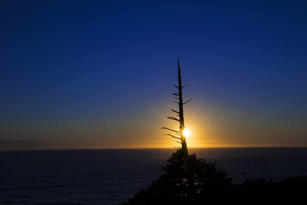 Sunset Stick0A0A0517.jpg