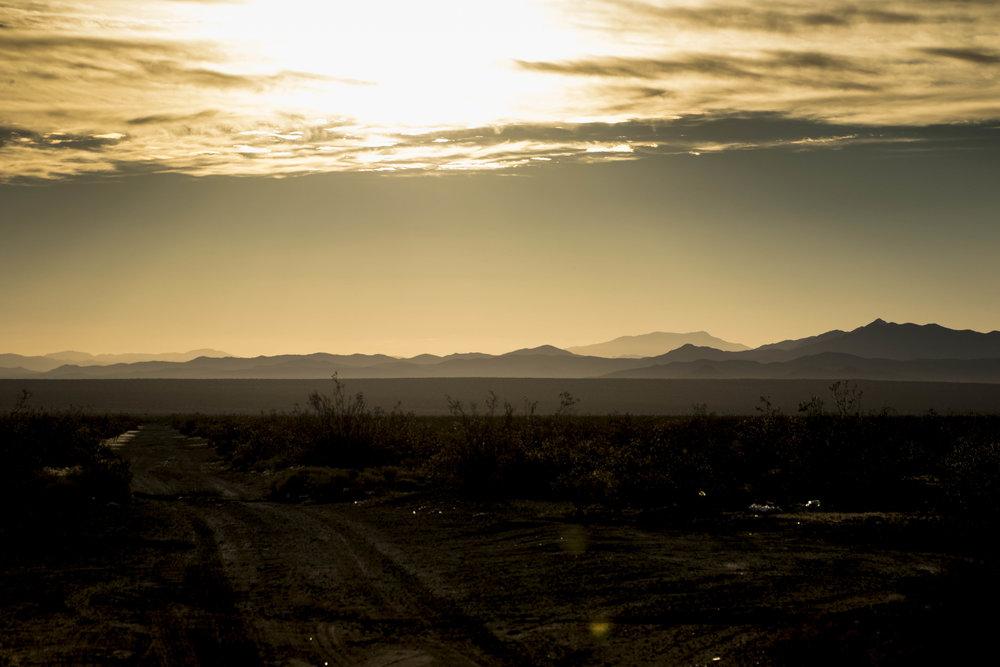 MojaveCA0A0A5453.jpg