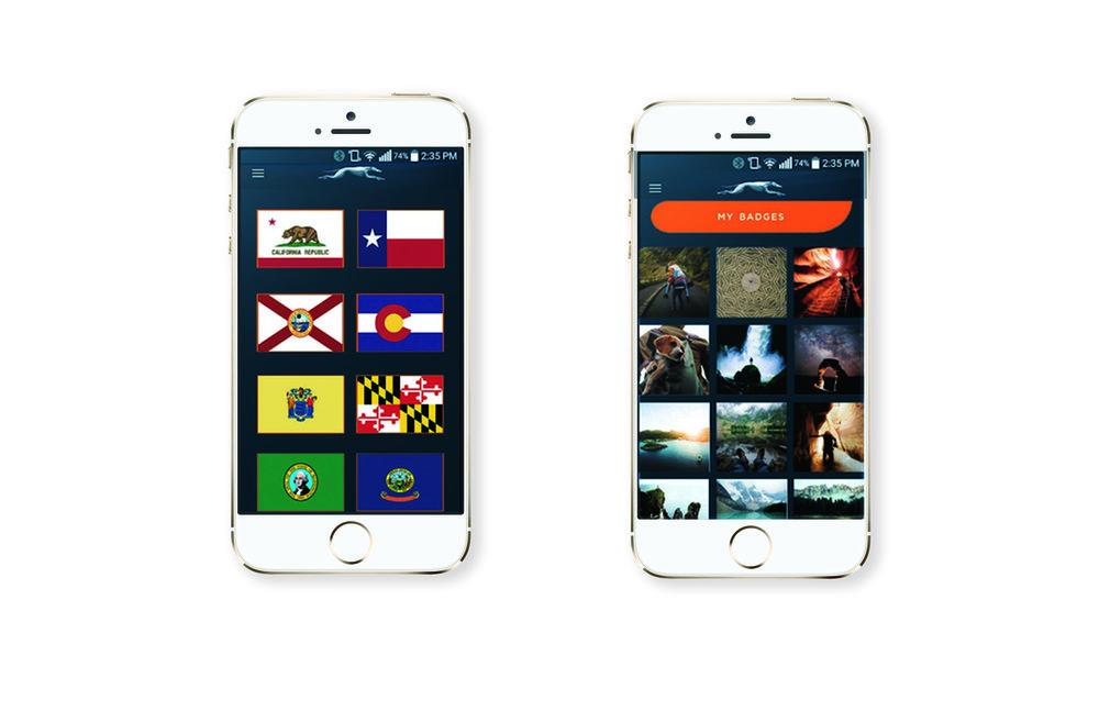 Greyhound app overhaul mockup2.jpg