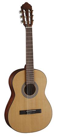 Cort_Guitar.jpg