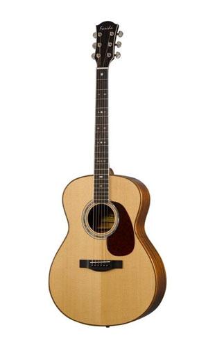 Farida Guitar R-10