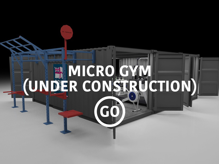 Micro Gym Small Box