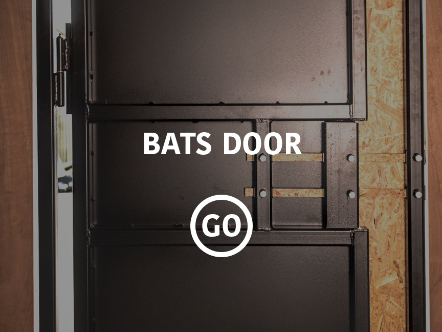 BATS Door Small Box