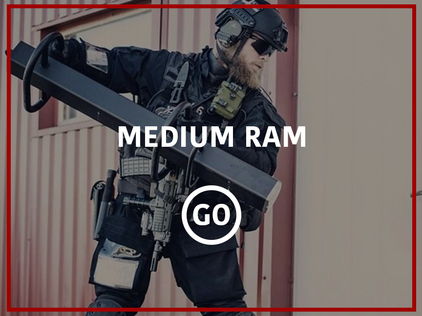 Medium Ram Small Box