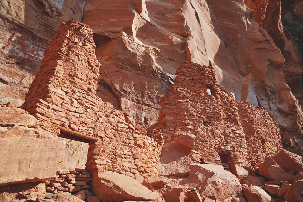 Sedona Arizona Palatki Ruins Hiking Guide