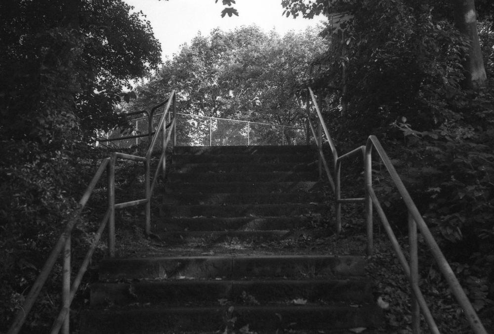 M3018.jpg