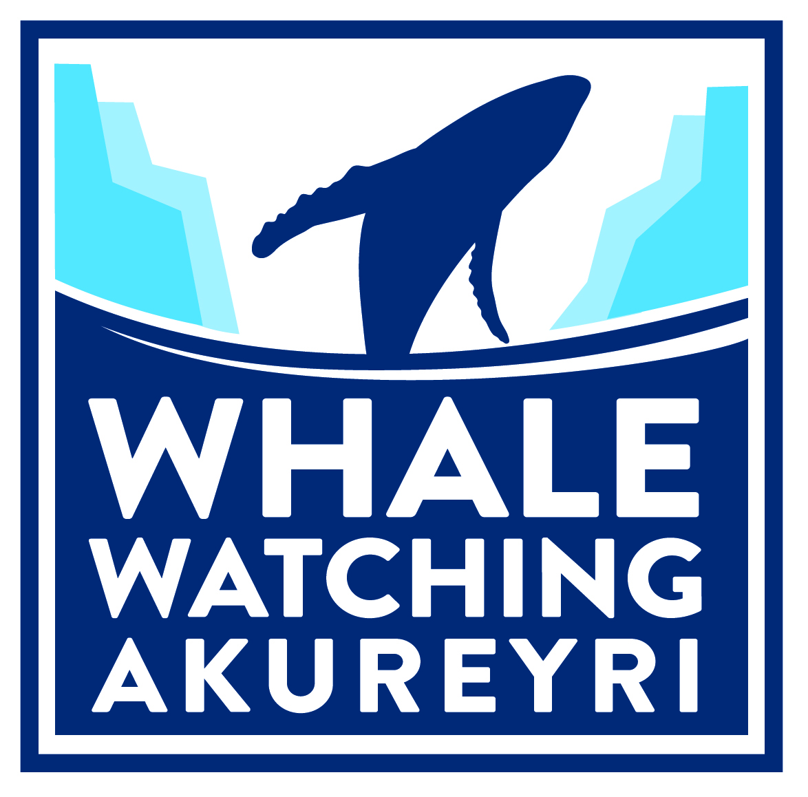 Whale Watching Tours Akureyri