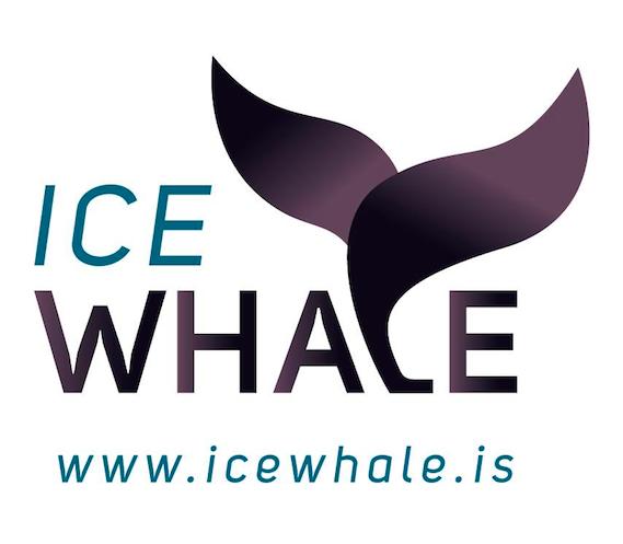 IceWhale