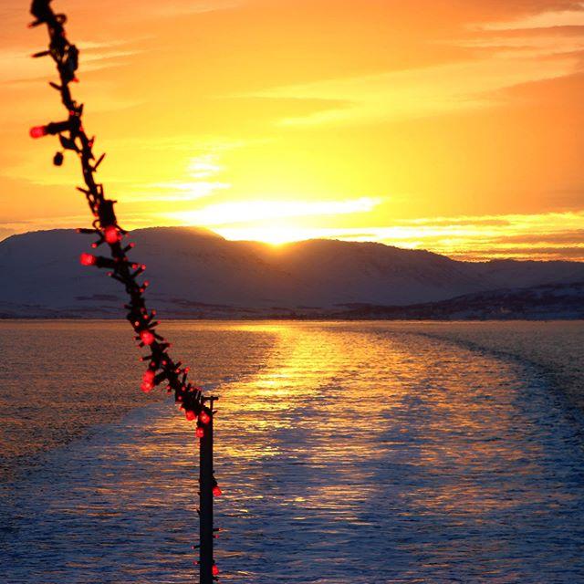 Beautiful winter's day captured by guide Alberto 🌅 #akureyri #visitakureyri #northiceland #iceland #winter #whalewatching #sea #ocean #boat #cruise #ship #ahoy #captain #sunrise #sunset #beautiful #amazing #landscape #eyjafjordur #fjord
