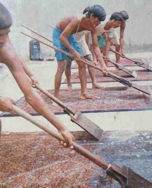 Vakkundige reiniging Perzische tapijten