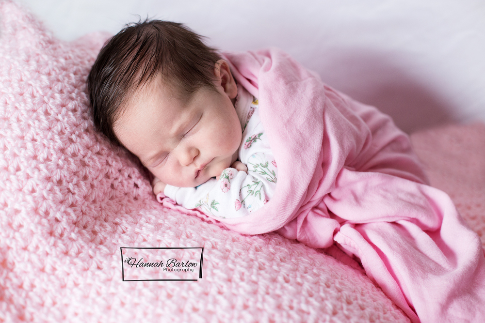 Newborn Photography Wellsburg WV