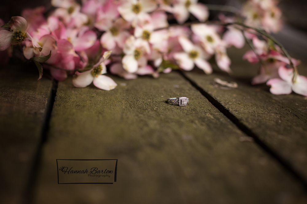 Wellsburg, WV Engagement Pictures Engagement Ring