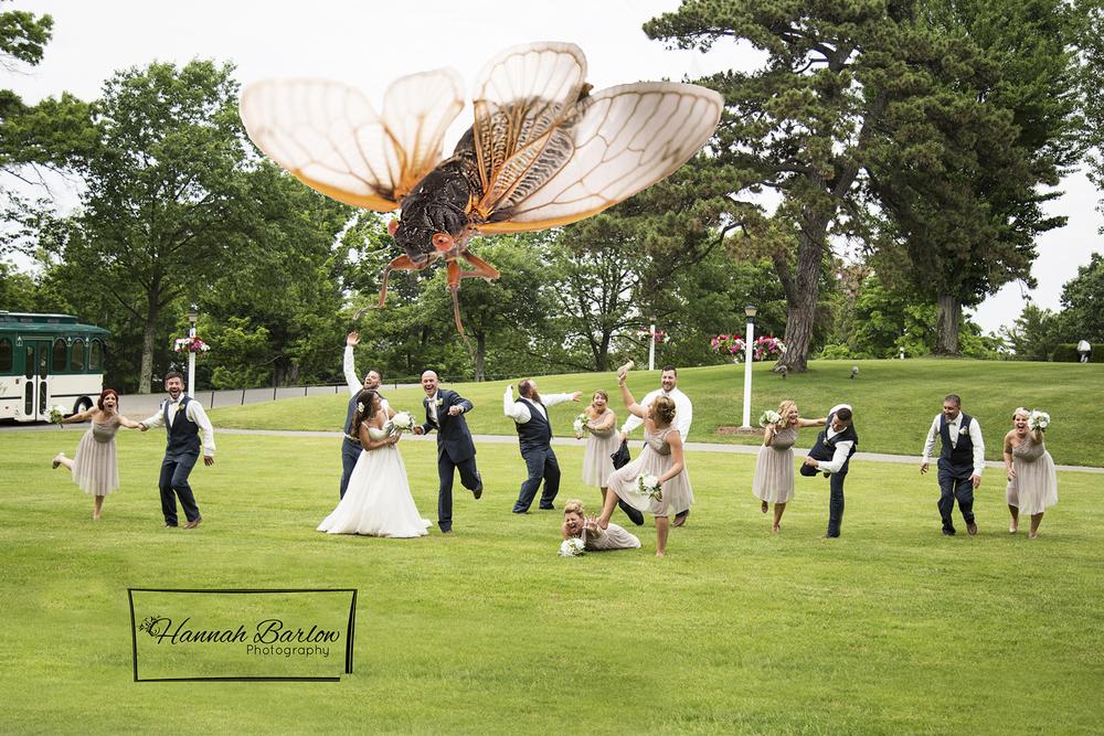 Oglebay Wedding Photo, Wheeling, WV 17 Year Cicadas