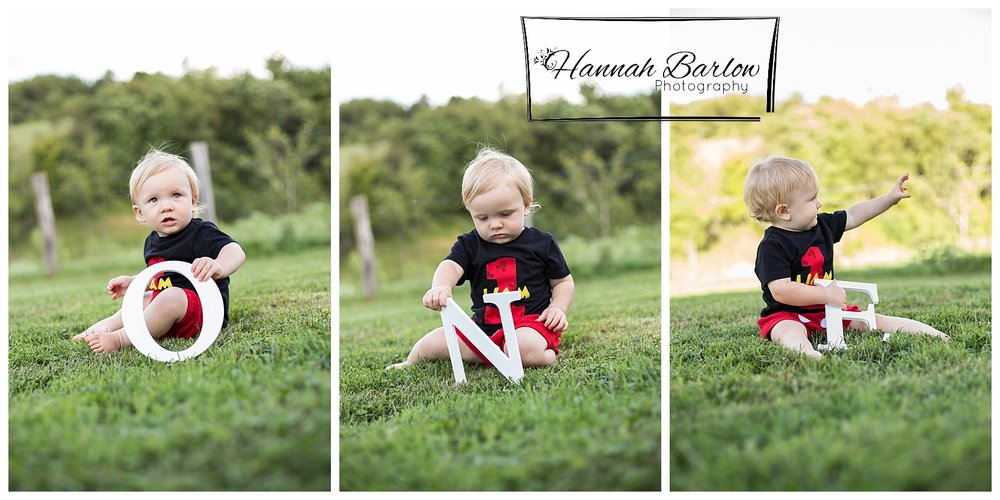 1st Birthday Photo Wellsburg, WV ONE