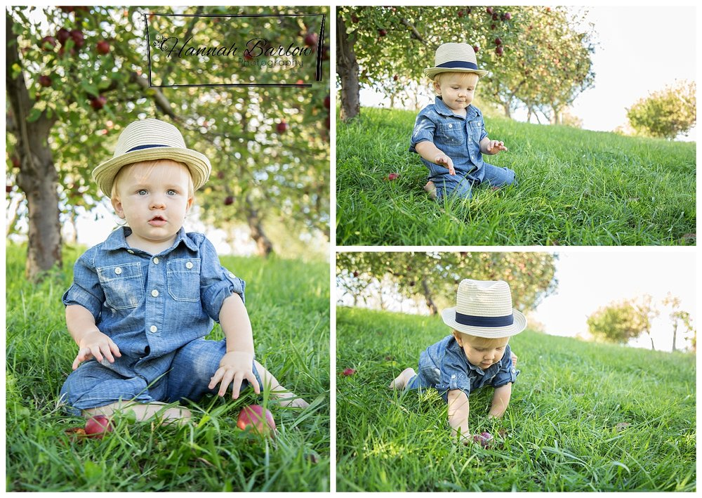 1st Birthday Photos in Apple Orchard