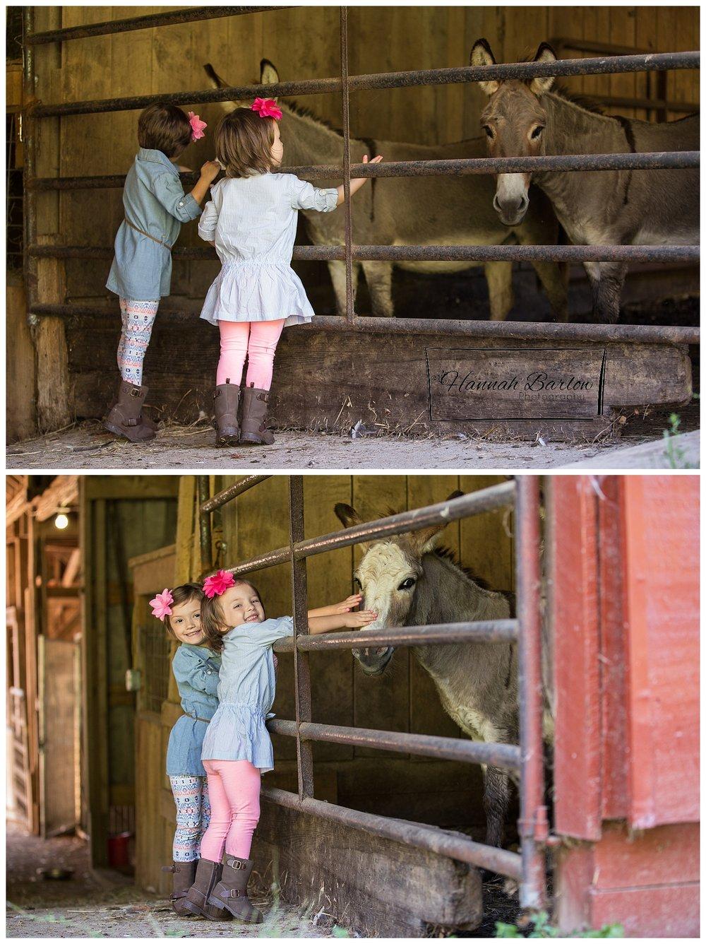 Children's Country Photo Session, Wellsburg, WV