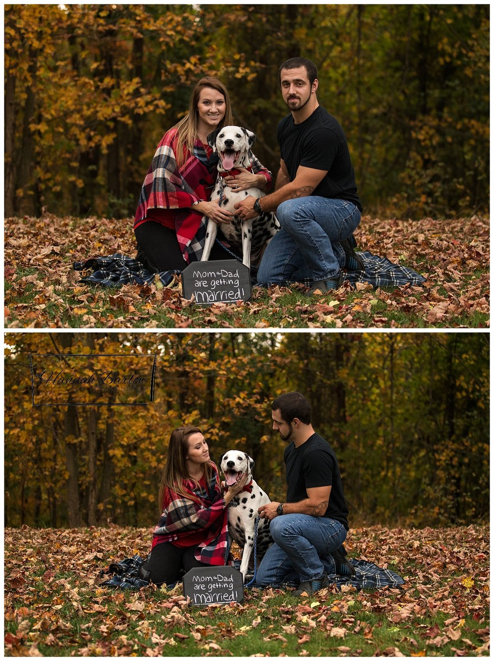 Fall Engagement Pictures with Dalmation