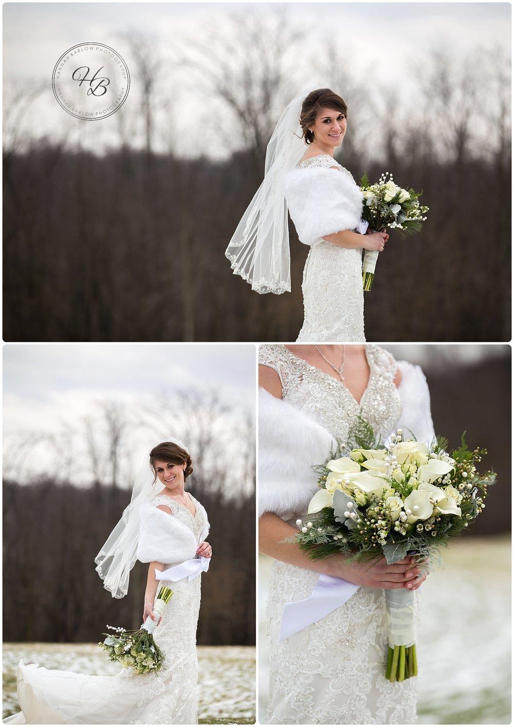Winter Wedding Bridal Shots Wellsburg WV