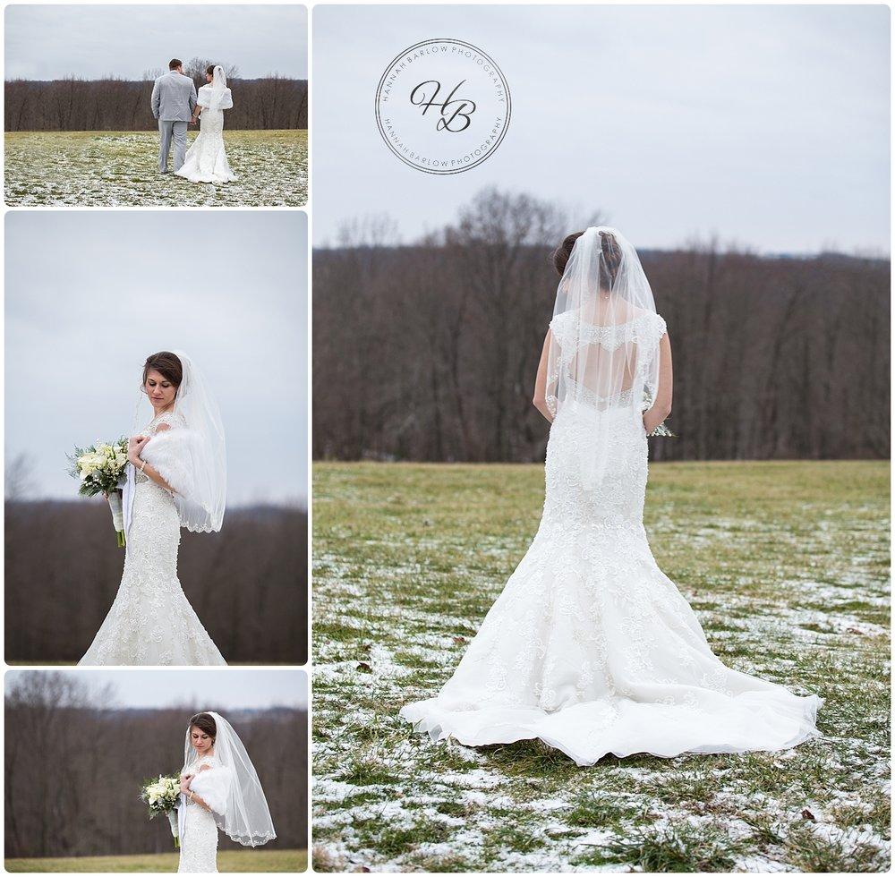Winter Wedding Wellsburg WV Photography