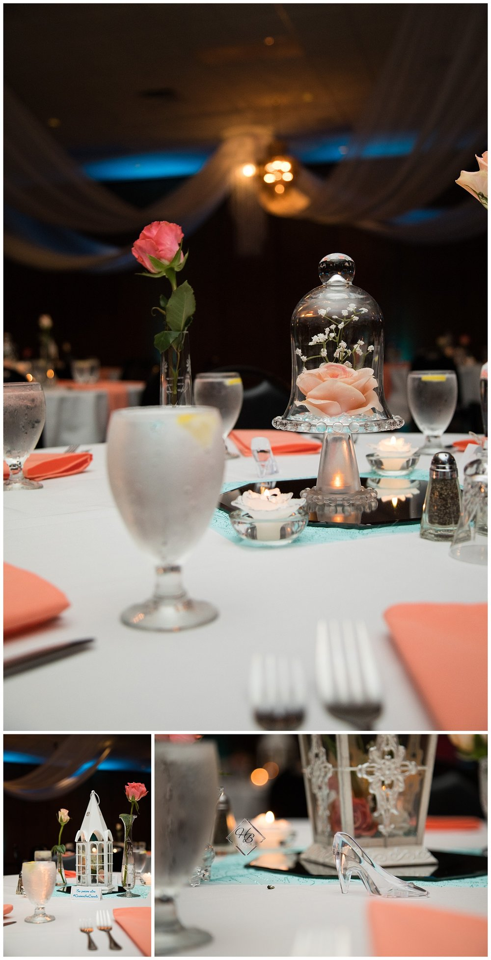 Youngstown, OH Fairytale Wedding Beauty and the Beast Theme Reception