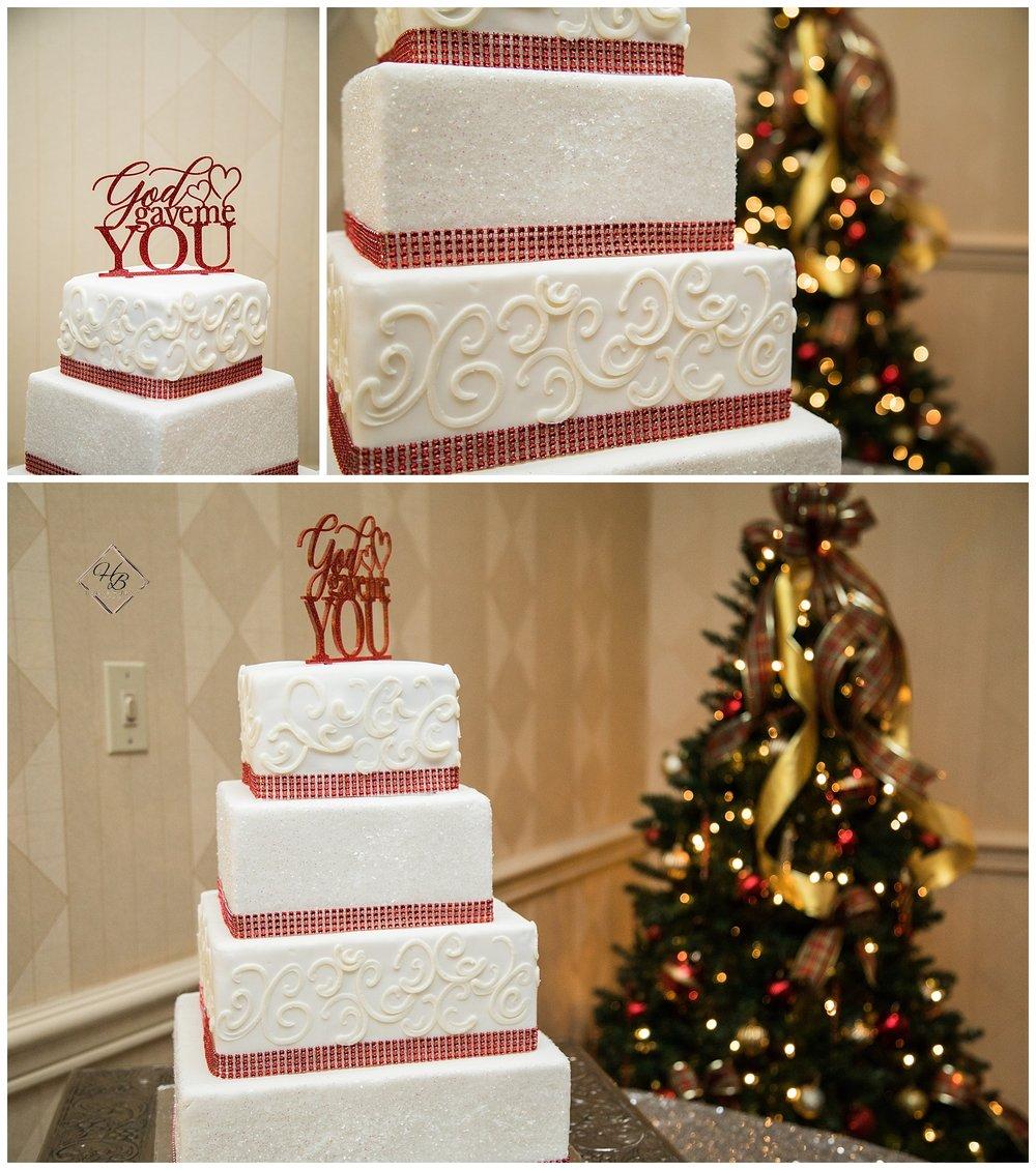 Christmas-Weirton-West-Virginia-Wedding-Photographs_1607.JPG