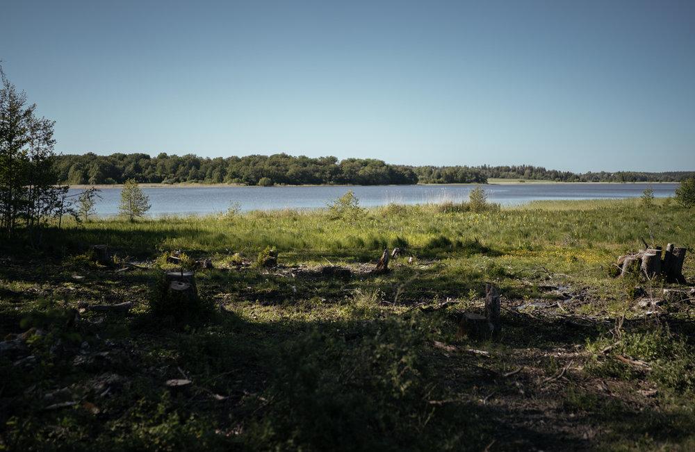 sjön.jpg