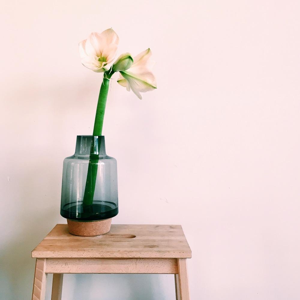 Bloop Vase.jpg