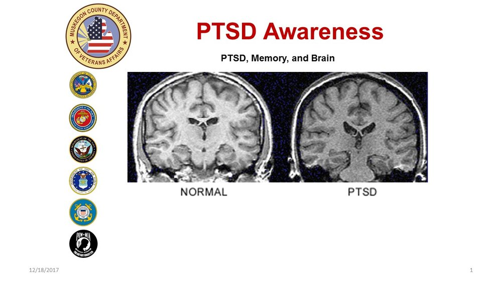 "Two structures of the Emotional Brain that play an important role in PTSD are the amygdala and the hippocampus. The hippocampus is involved in memory forming, organizing, connecting emotions and senses–such as smell and sound–to memories, and storing this information away in long term memory for later use.  The amygdala activates the body's alarm system (the fight or flight response). The amygdala has the unique ability to scan all signals–sights, sounds, smells, etc. It performs threat assessment and say's either ""there's danger"" or ""it's safe. The amygdala is a hair trigger that makes rapid judgments about a situation."