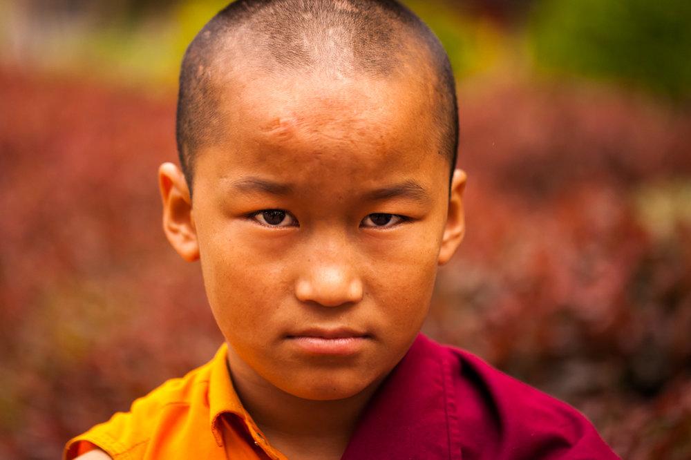 Portrait of a little Buddhist Monk at The Namdroling Nyingmapa Monastery, Bylakuppe, Karnataka, India