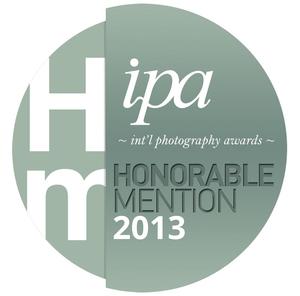 IPA 2013
