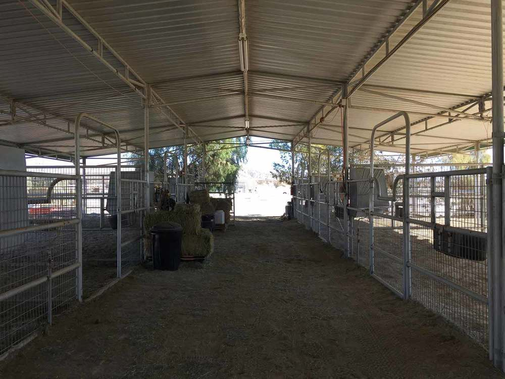 Mare Motel 16 x 32' Stalls 6' Dividers with Stud Mesh