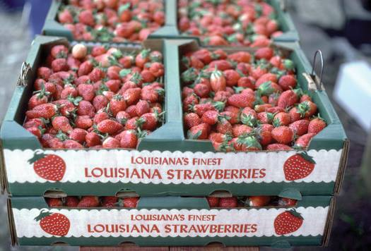 Image via Ponchatoula Strawberry Festival on Facebook.