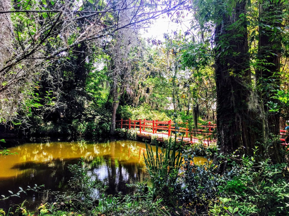 Gardens at Magnolia Plantation in Charleston