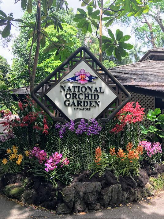 National Orchid Garden Singapore.JPG