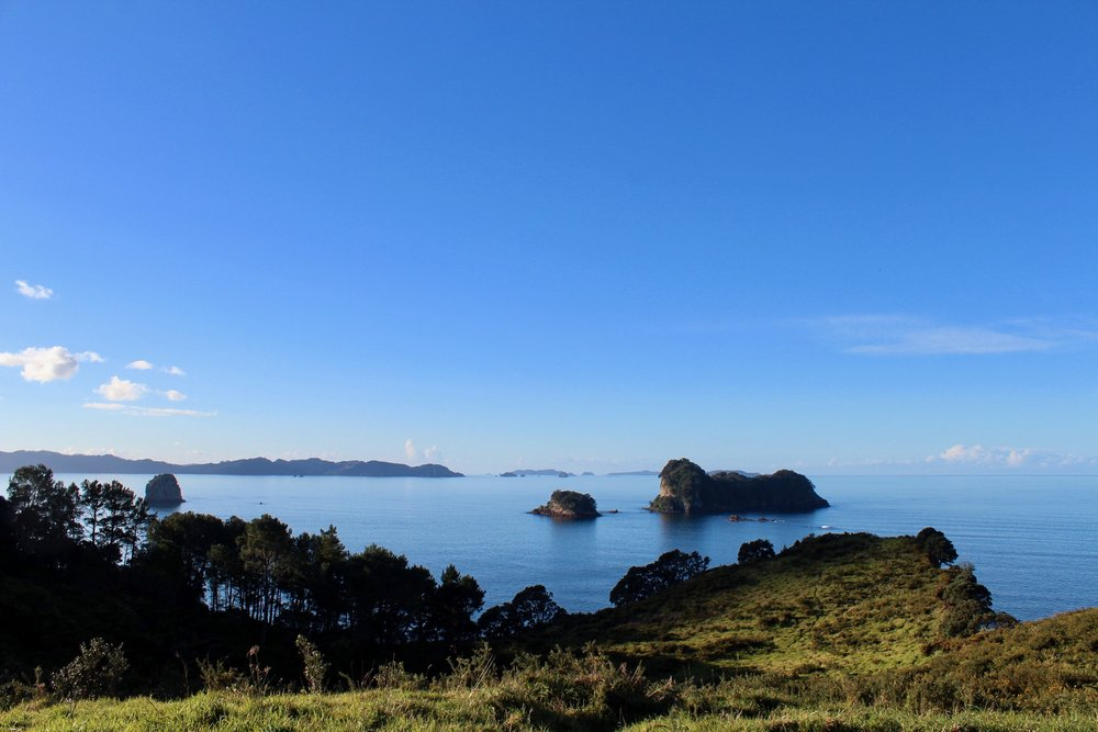 The view from the trail leading to Cathedral Cove
