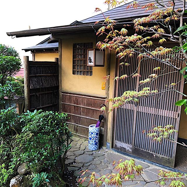 My accommodations for the night at a traditional Japanese ryokan.