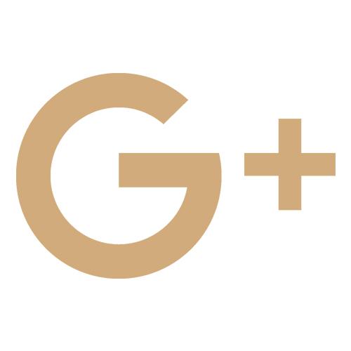 google_icon.jpg